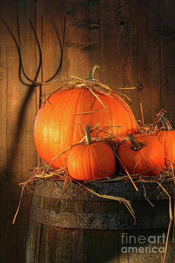 Agriculture Photograph - Pumpkins On Wine Barrel  by Sandra Cunningham