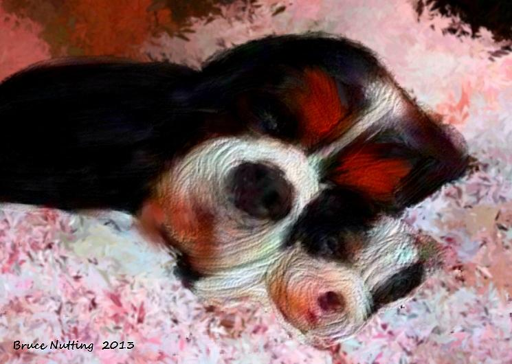 Dog Painting - Puppy Love by Bruce Nutting