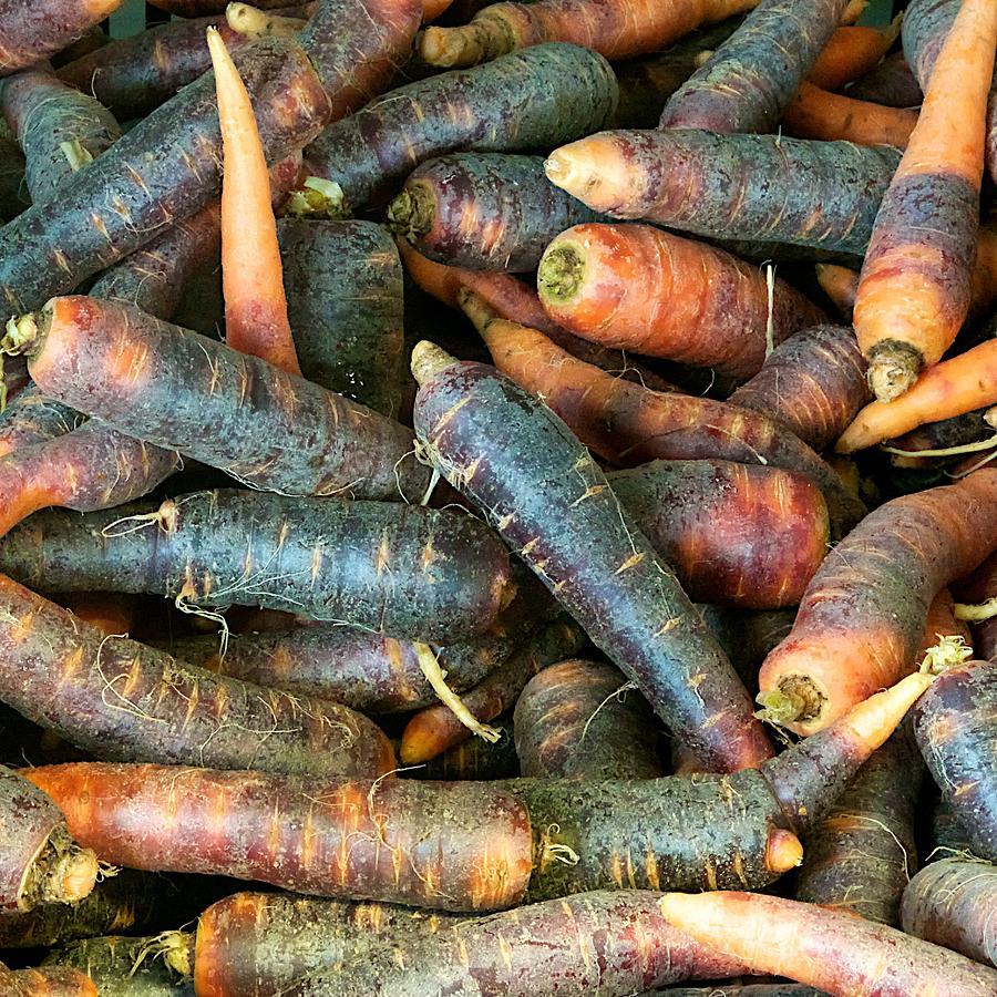 Purple Carrots Photograph - Purple Carrots by Tom Giske