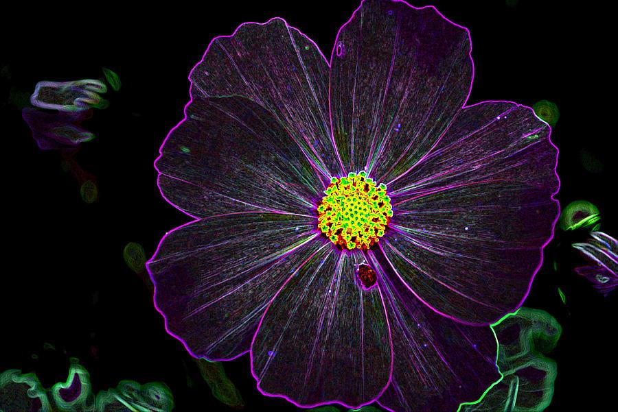 Blossom Digital Art - Purple Charisma by Vijinder Singh