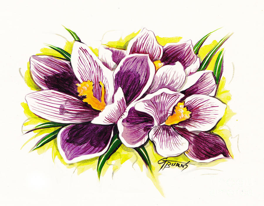 Watercolor Painting - Purple Crocus Watercolor by GG Burns