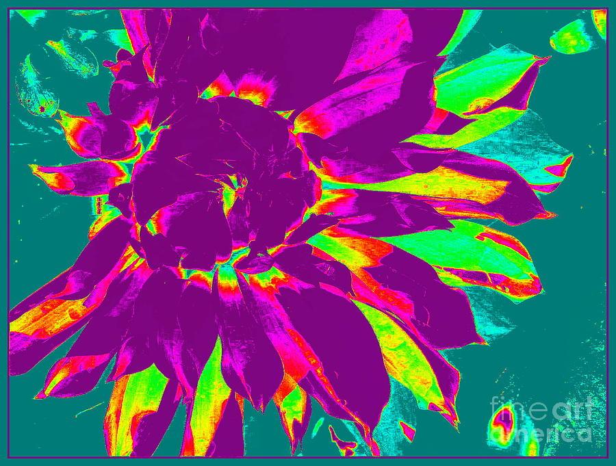 Pop Photograph - Purple Dahlia Pop Art by Dora Sofia Caputo Photographic Design and Fine Art