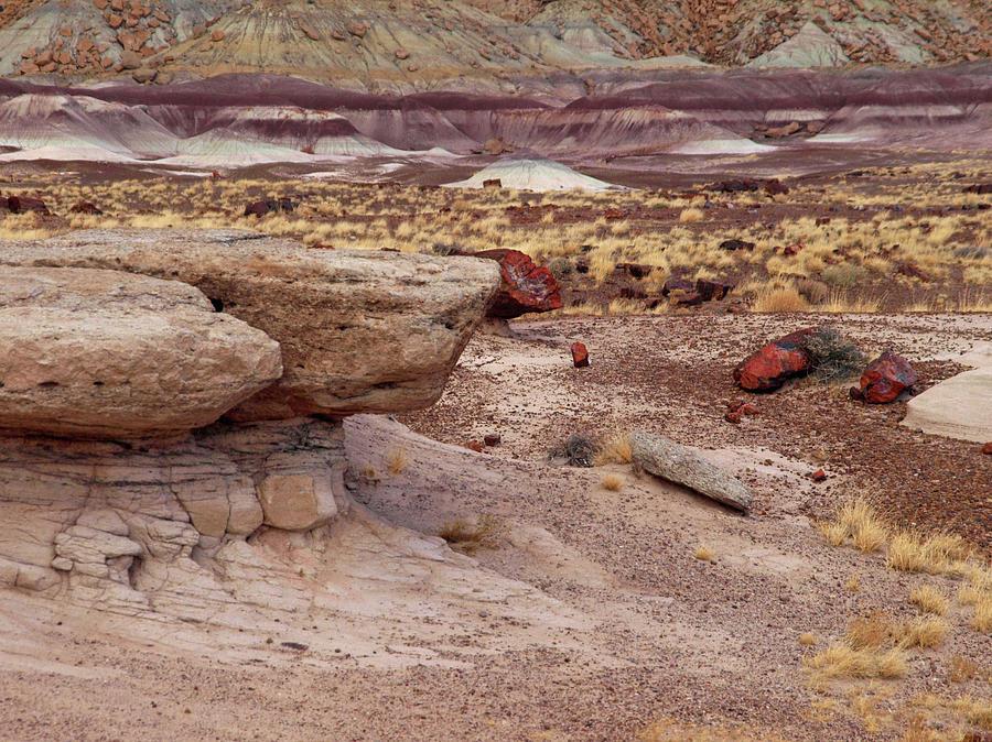 Jim Photograph - Purple Earth by James Peterson