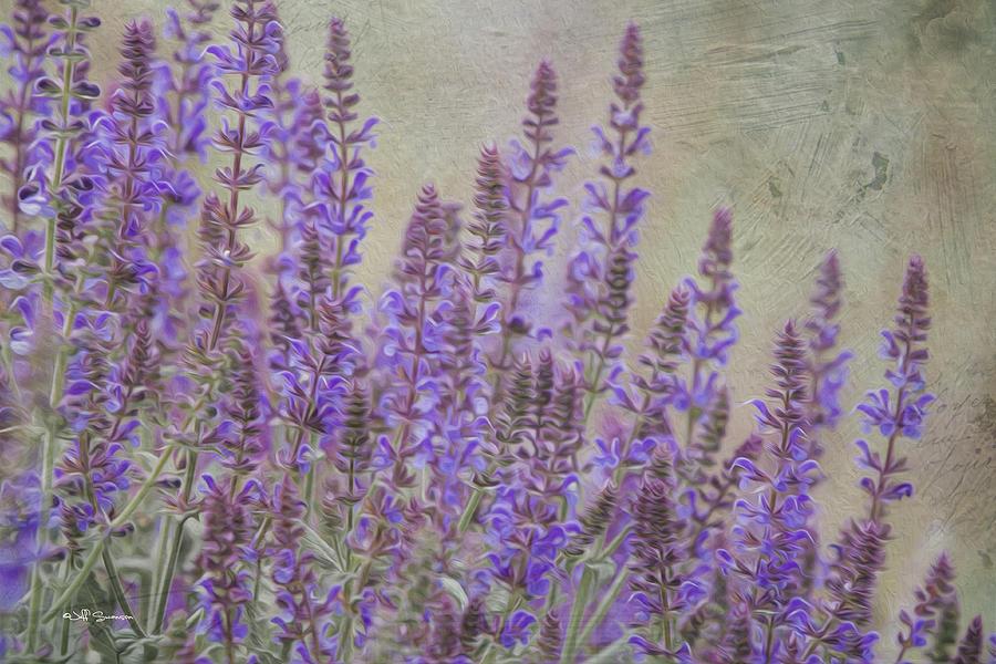 Purple Haze Photograph - Purple Haze by Jeff Swanson