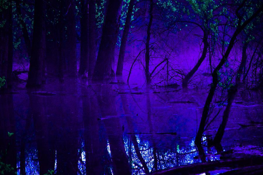 Reflection Photograph - Purple Haze by Valarie Davis