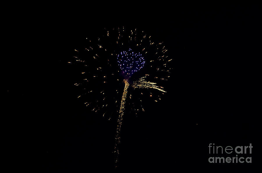 July 4th Photograph - Purple Heart by Joe Scott