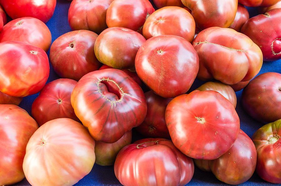 Agriculture Photograph - Purple Heirloom Tomatoes  by John Trax