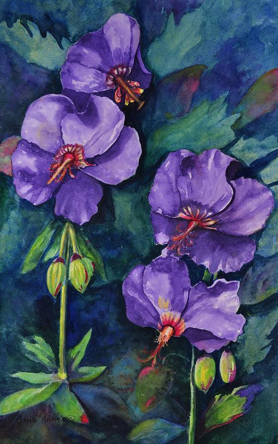 Purple Hibiscus Painting By Jane Ricker