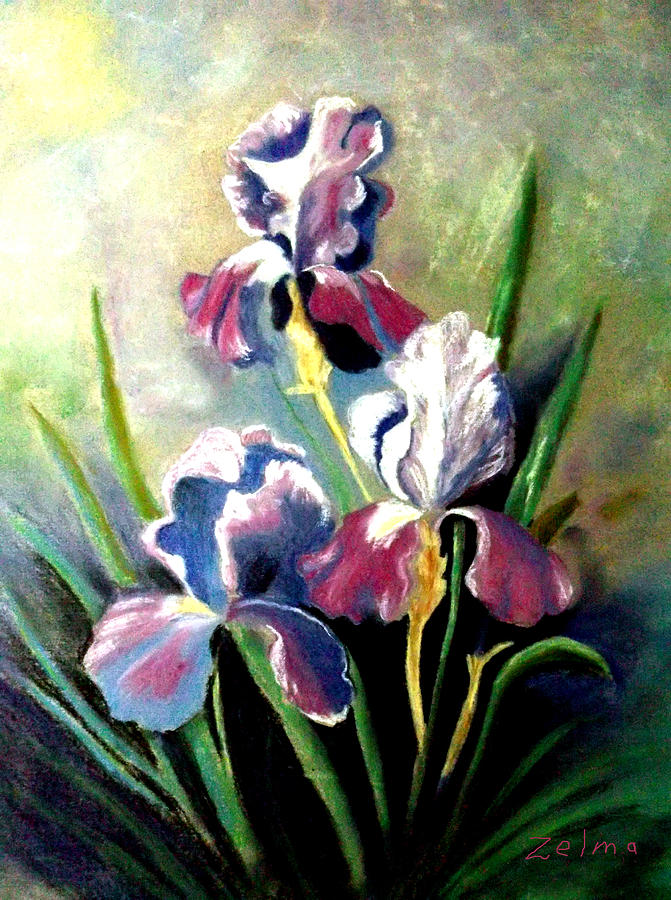 Iris Painting - Purple Passion by Zelma Hensel