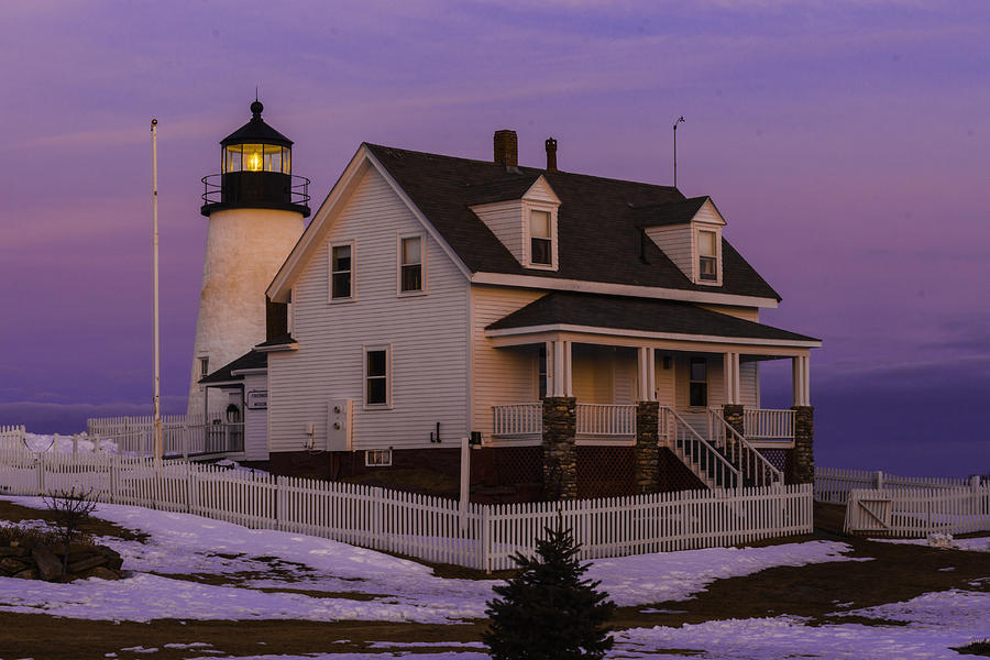 Purple Pemaquid by David Hufstader