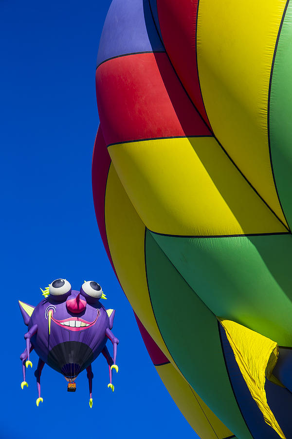 Purple People Eater Hot Air Balloon Photograph - Purple People Eater Smiling by Garry Gay