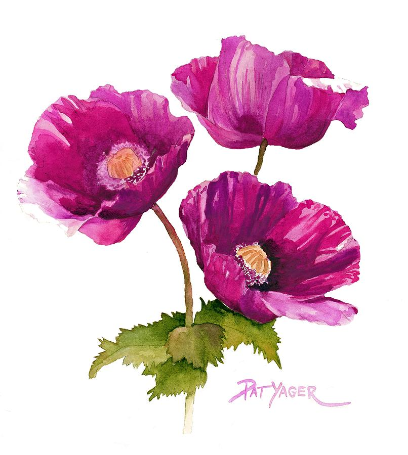 purple poppies painting by pat yager