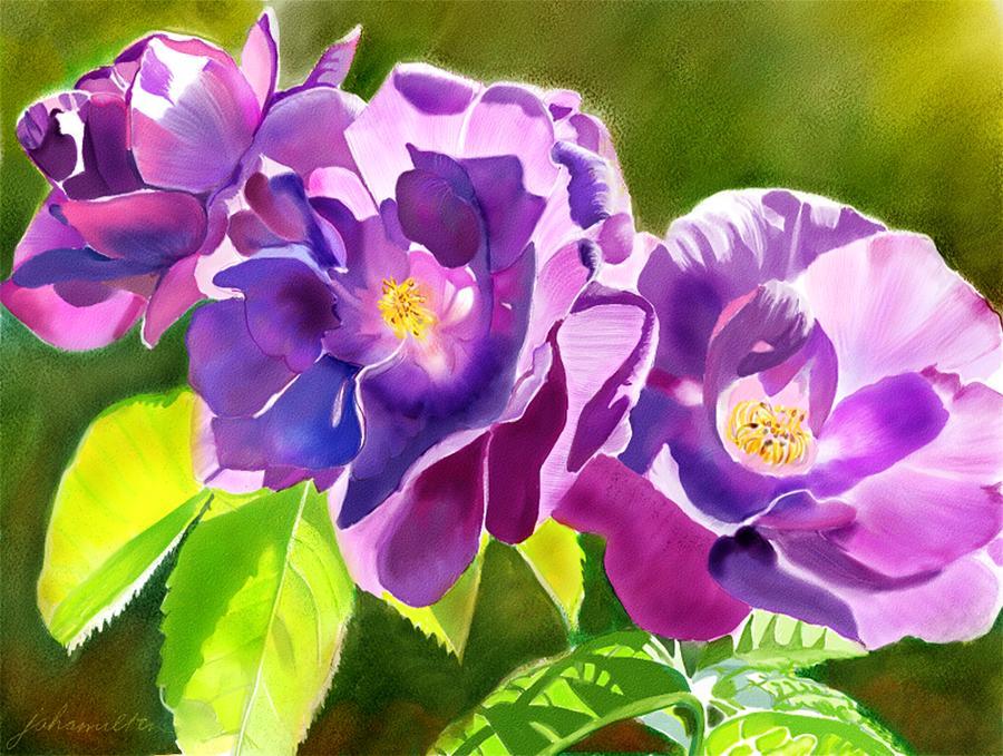 Purple Painting - Purple Roses by Joan A Hamilton