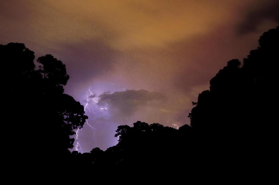 Silhouette Photograph - Purple Strike by John Rush
