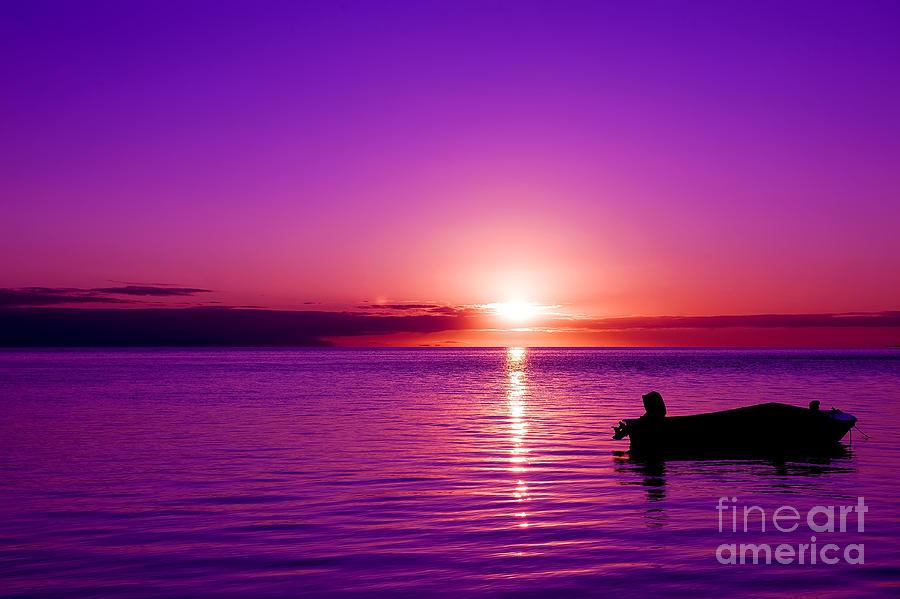 purple sunrise photograph by yew kwang