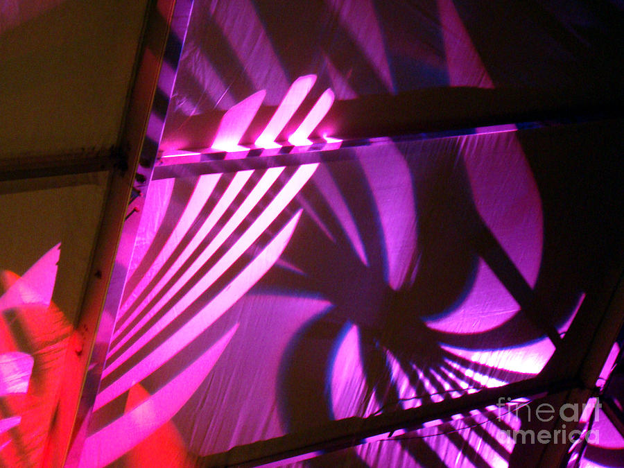 Abstract Photograph - Purple Swirls by Eva Kato