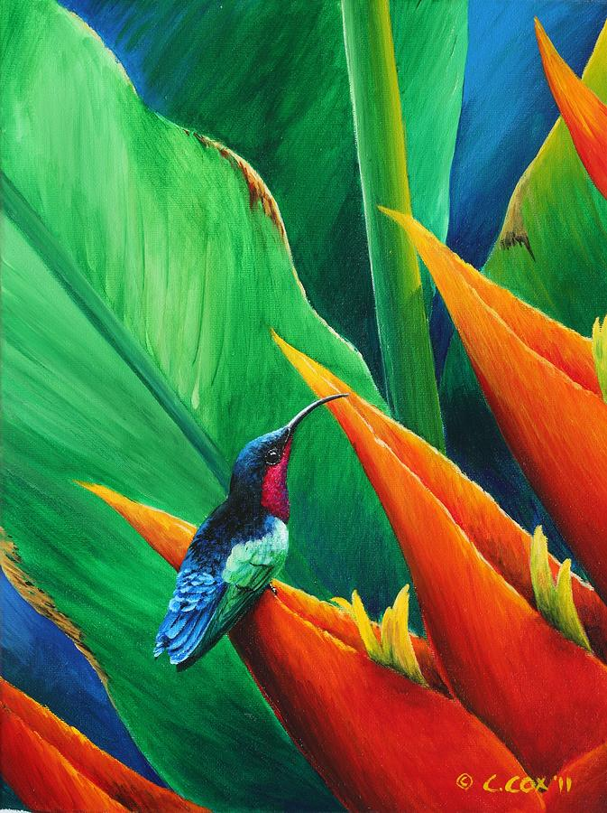 Purple Throated Carib And Heliconia Painting By