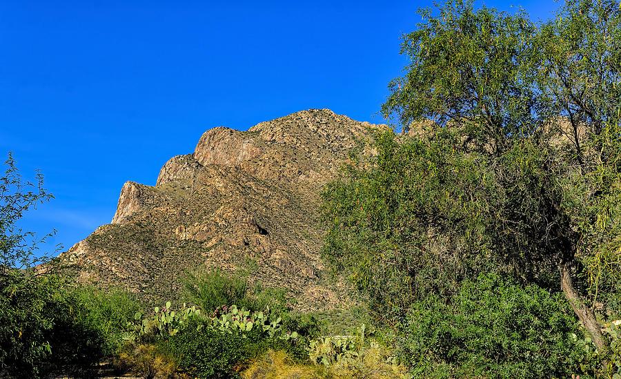 Pusch Ridge No.6 Photograph