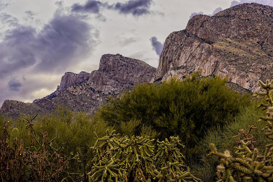 Pusch Ridge Peaks No.15 Photograph