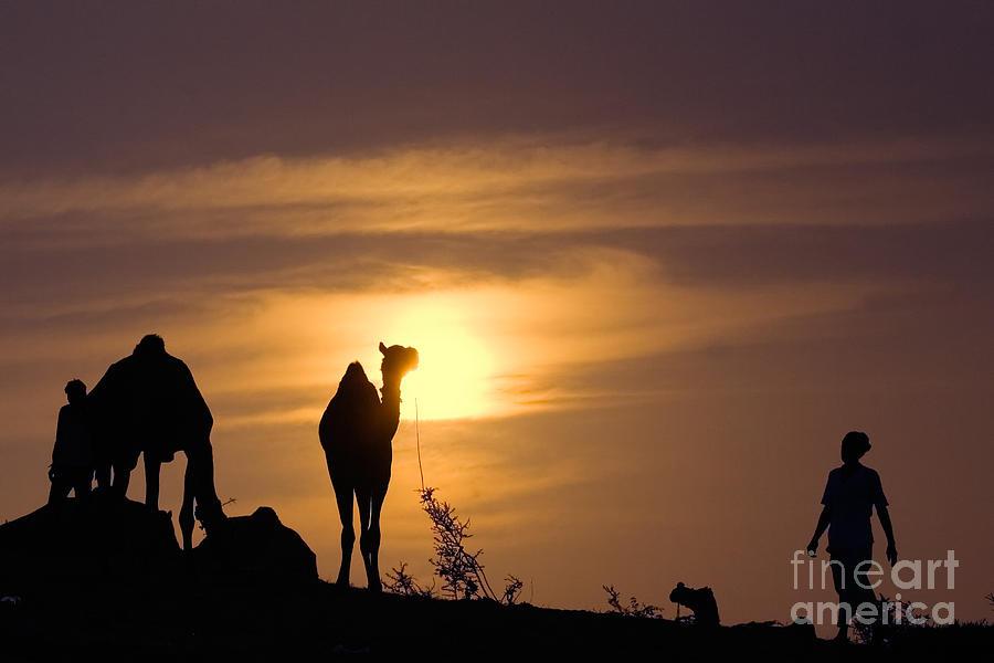 Travel Photograph - Pushkar Sunset Rajasthan India by Neville Bulsara