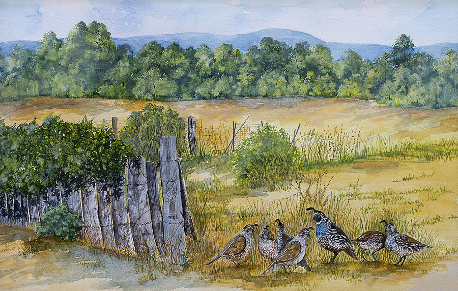 Quail And Fence Painting