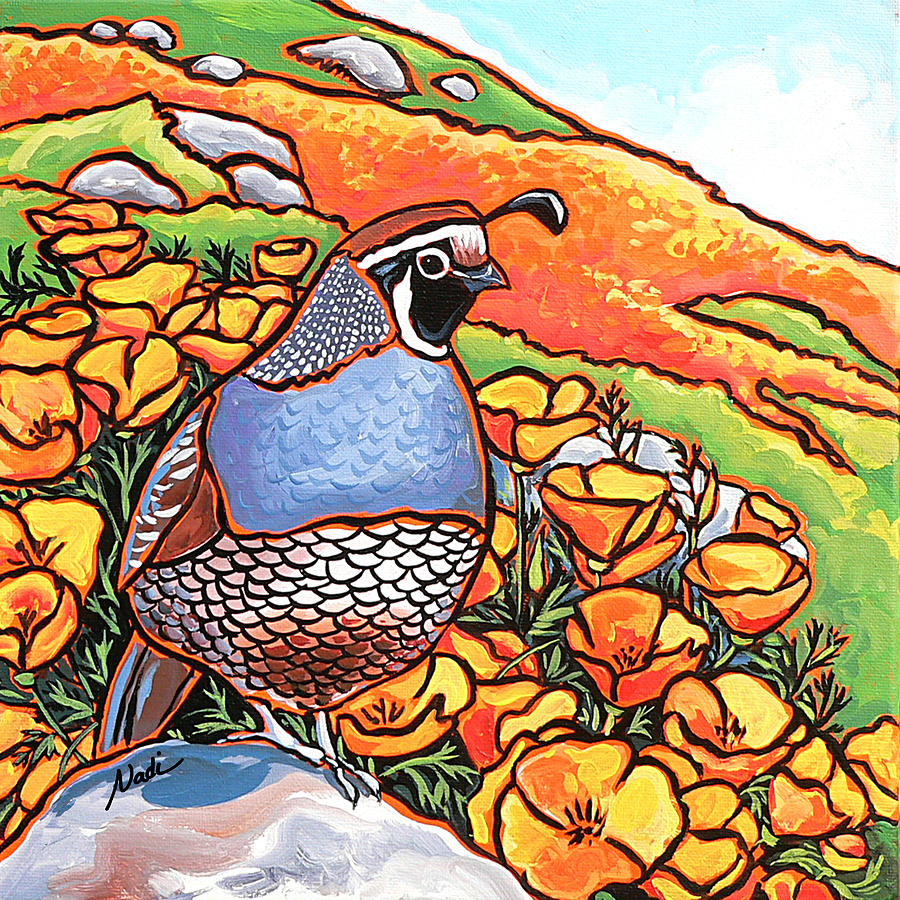 California Poppies Painting - Quail Poppies by Nadi Spencer