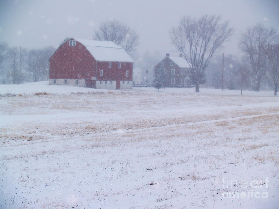 Farm Photograph - Quakertown Farm On Snowy Day by Anna Lisa Yoder
