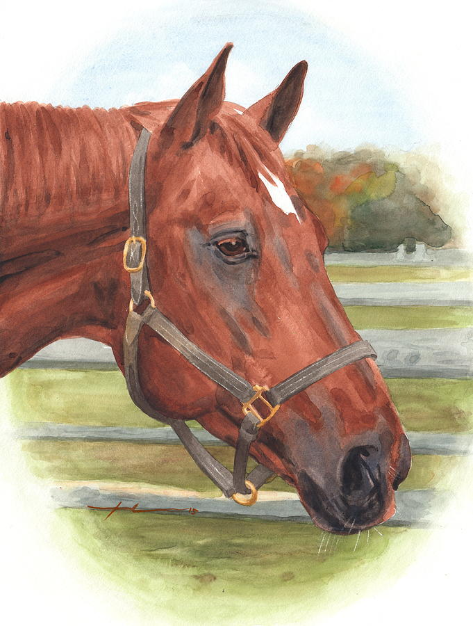 Quarter Horse Watercolor Portrait Drawing by Mike Theuer