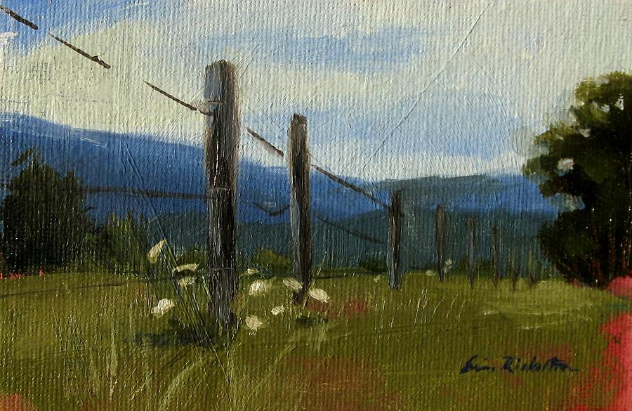 Cades Cove Painting - Queen Annes Lace by Erin Rickelton