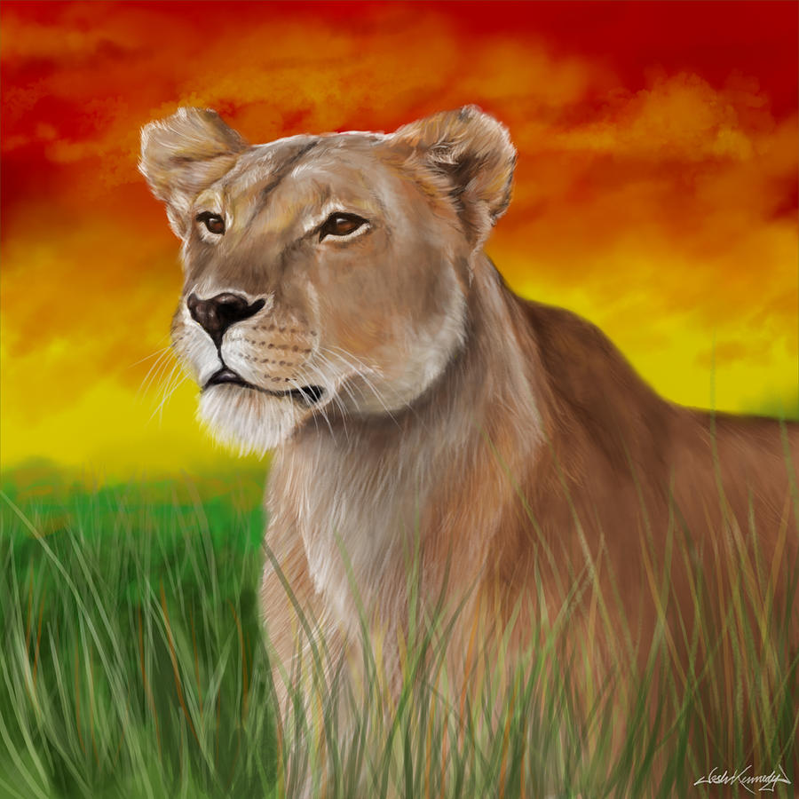 Queen Lioness Drawing