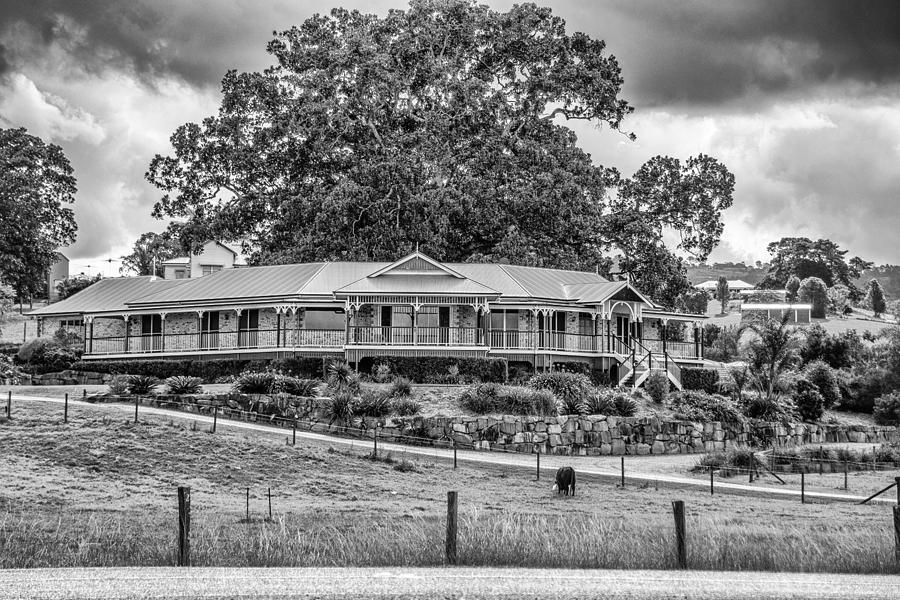 Queenslander by Peter Lombard