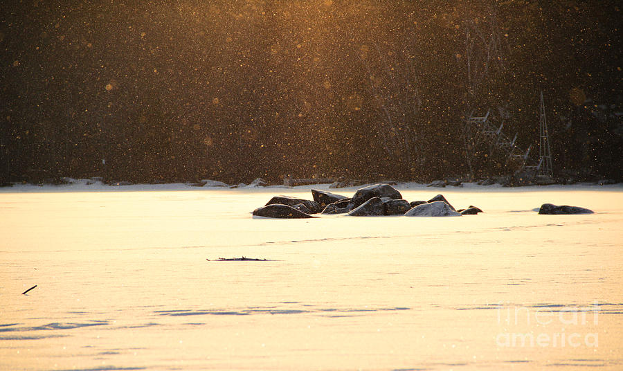 Sunrise Winter Photograph - Quick Flurry by Michael Mooney