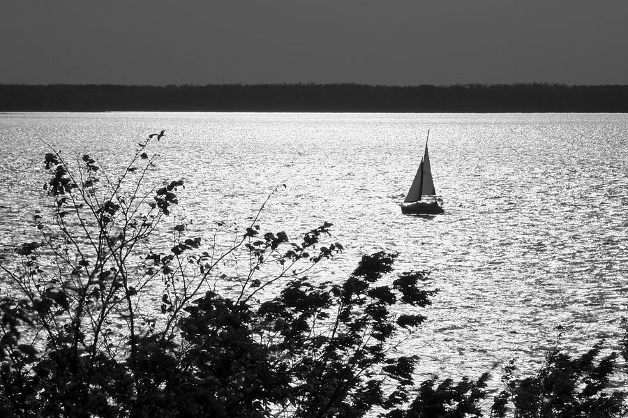 Sailing Photograph - Quick Silver - Sailboat On Lake Barkley by Jane Eleanor Nicholas