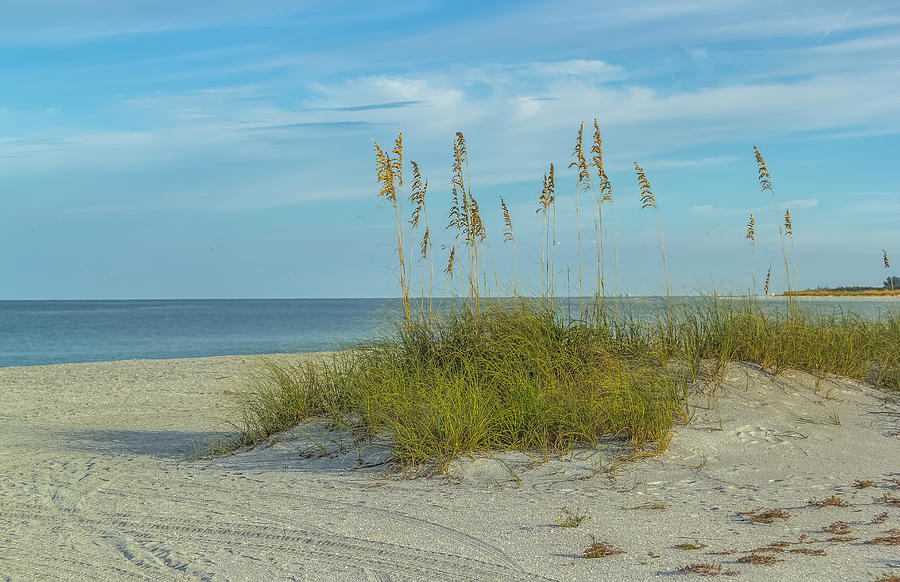 Florida Photograph - Quiet Beach by Jane Luxton