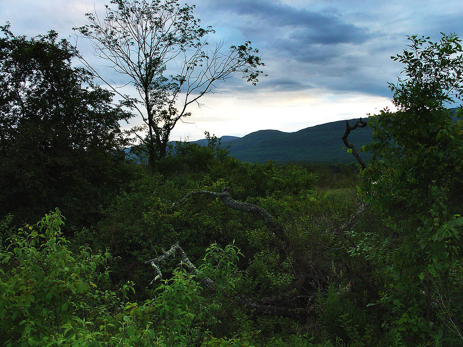 Palenville Photograph - Quiet By Day It Is Dusk That Awakens The Dragon At Styers Flats by Terrance DePietro