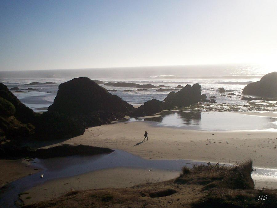 Beach Photograph - Quiet Contemplation by Absinthe Art By Michelle LeAnn Scott