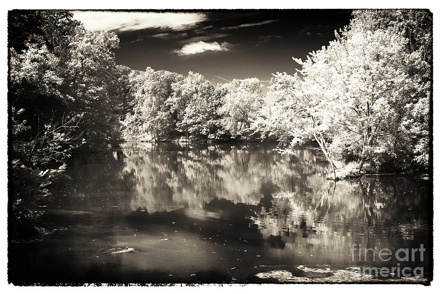 Pond Photograph - Quiet On The Pond by John Rizzuto