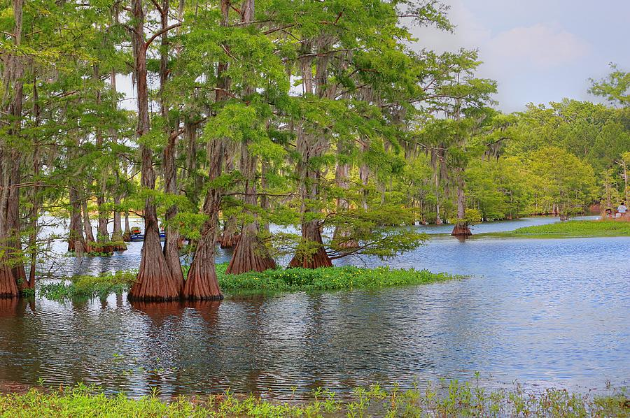 Bayou Photograph - Quiet Time At The Bayou by Ester McGuire