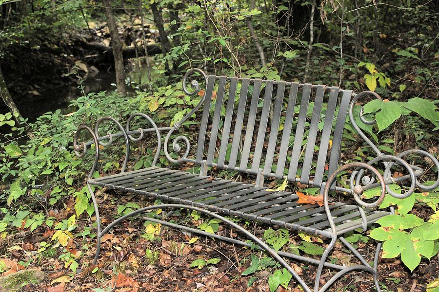 Bench Photograph - Quiet Time At The Park. by Edward Hamilton