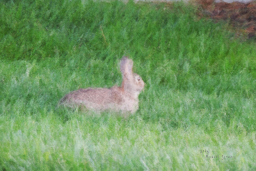 Rabbit Digital Art - Rabbit In The Grass by Michael Stowers
