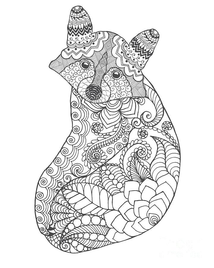 Symbol Digital Art - Raccoon. Black White Hand Drawn Doodle by Palomita