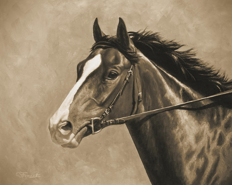 Horse Painting - Racehorse Painting In Sepia by Crista Forest