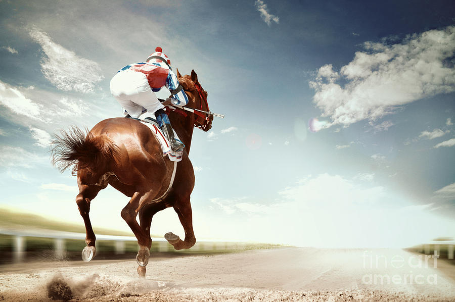 Compete Photograph - Racing Horse Coming First To Finish by Olga i