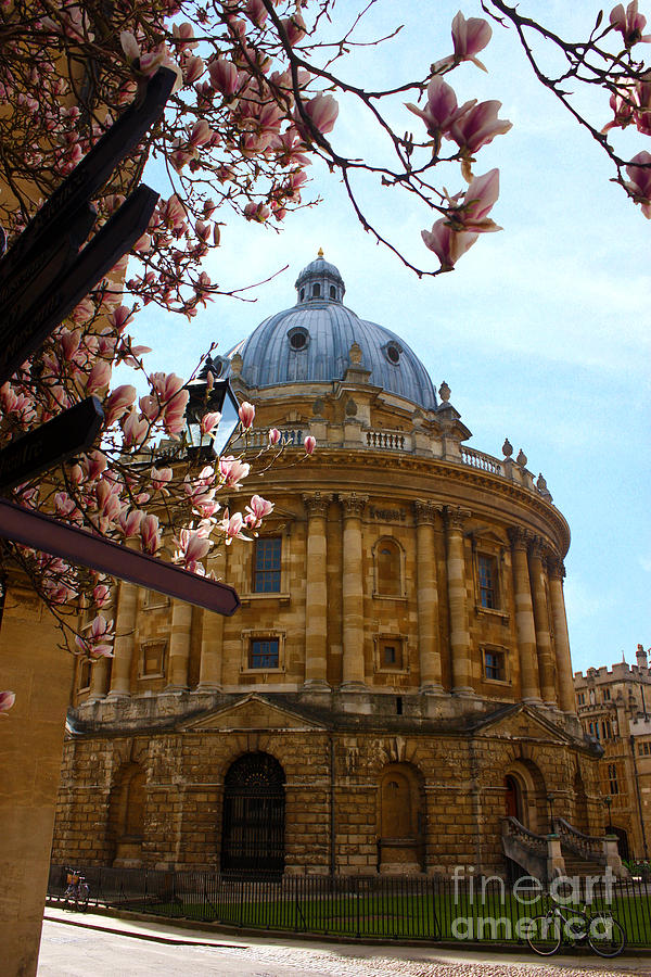 Radcliffe Camera Photograph - Radcliffe Camera Bodleian Library Oxford  by Terri Waters