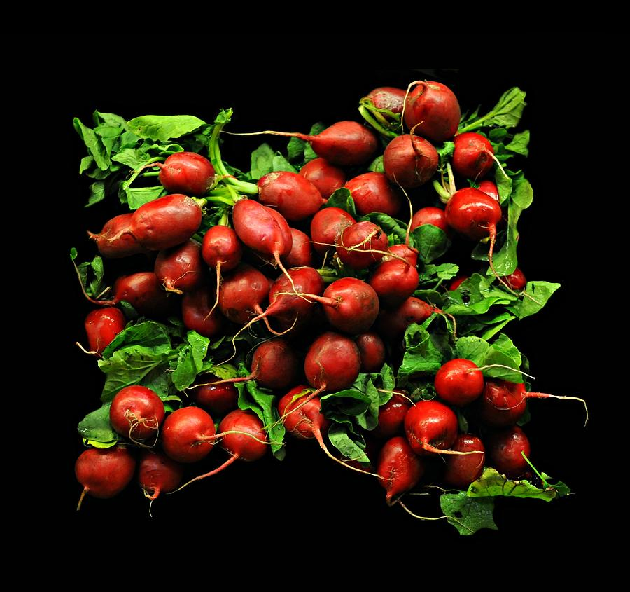 Vegetable Photograph - Radishes  by Diana Angstadt