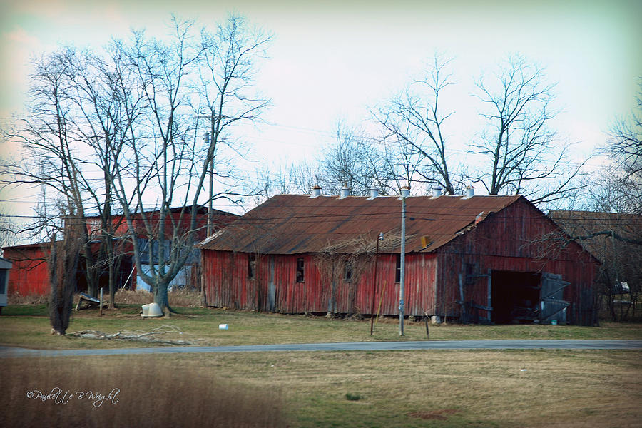 Featured Photograph - Ragged Red Shed I by Paulette B Wright