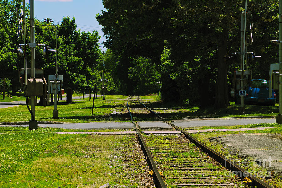 Phelps Photograph - Rail Crossing by William Norton