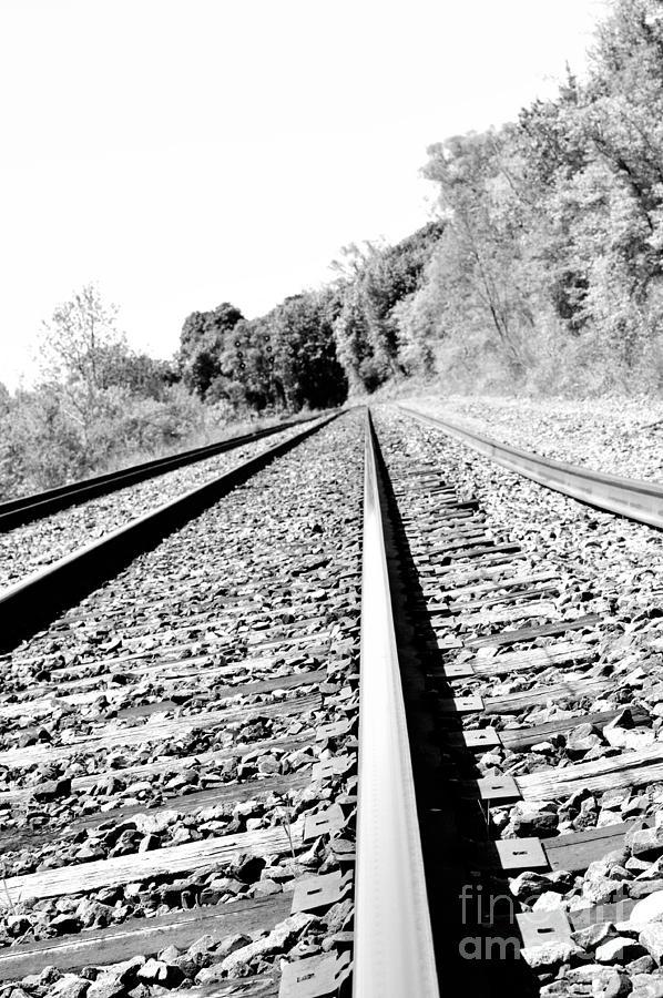 Rail Photograph - Railroad Track by Joe Ng