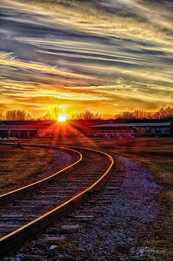 Rails Photograph - Rails by Skip Tribby
