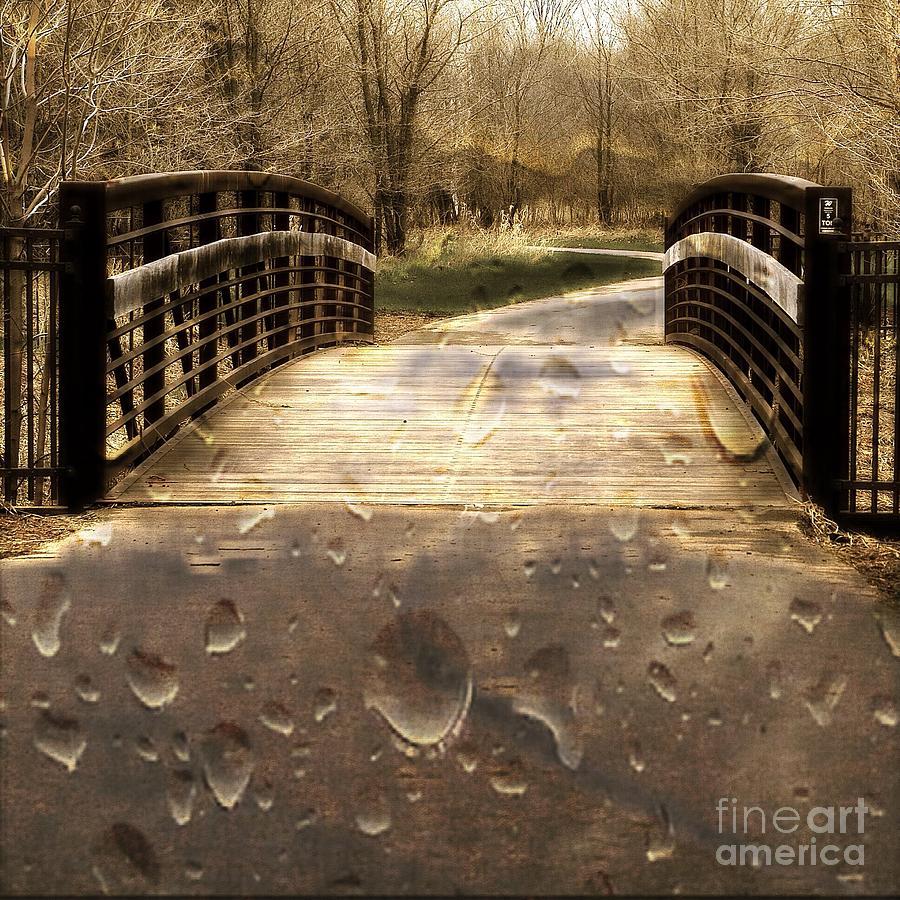 Rain Photograph - Rain Rain Go Away by Nikki Vig